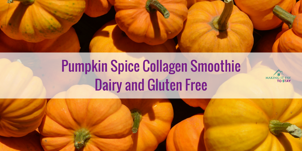 Pumpkin Spice Collagen Smoothie Dairy and Gluten Free
