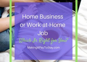Home business or work at home job which is right for you?