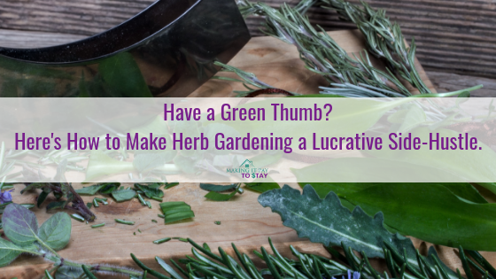 Have a Green Thumb? Here's How to Make Herb Gardening a Lucrative Side-Hustle.