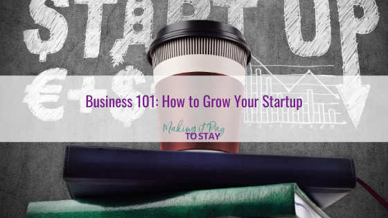 Business 101: How to Grow Your Startup
