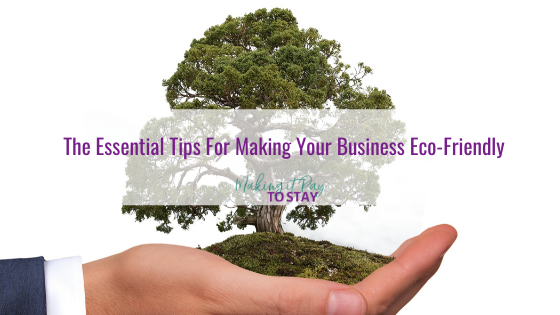 The Essential Tips For Making Your Business Eco-Friendly
