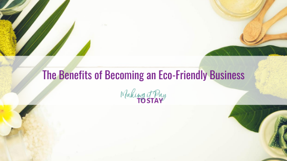 The Benefits of Becoming an Eco-Friendly Business