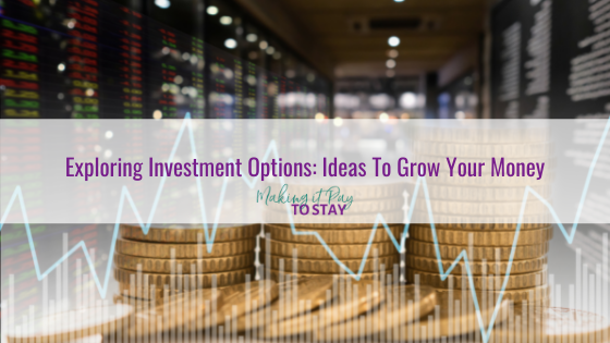 Exploring Investment Options: Ideas To Grow Your Money